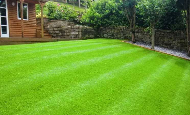 Когда сажать газонную траву, и как добиться её наилучшей всхожести, лучшее время для посадки