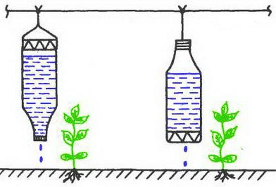 Капельный полив и его эффективность: самодельные и профессиональные варианты