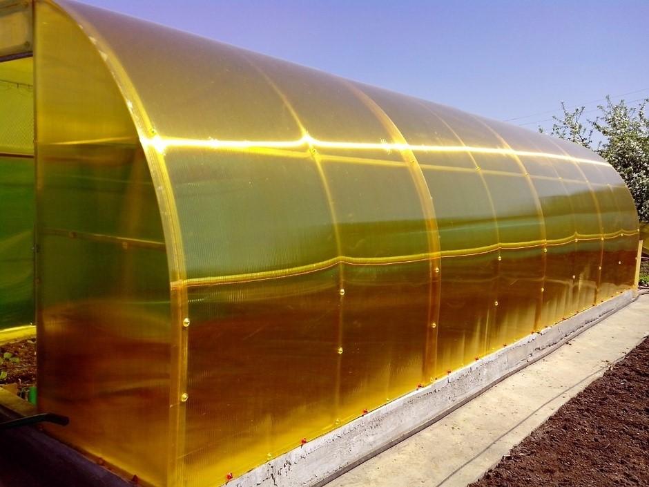 Какой поликарбонат приобретать для постройки хорошей теплицы: вопрос качества и подробное описание различных типов пластика
