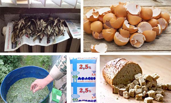 Когда и чем можно подкормить перцы до и после высадки в грунт: советы и составы