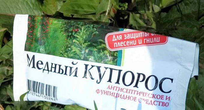 Обработка сада медным купоросом: что это за препарат - подробное описание и эффективность, где он пригодится, способы работы с деревьями и не только
