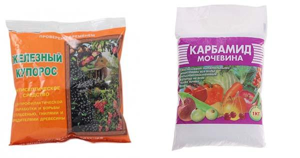 Обработка сада железным купоросом осенью и весной: пропорции, оптимальное время применения, эффективность