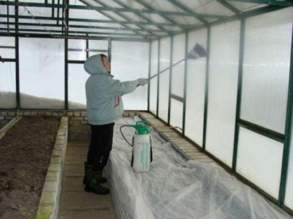 Обработка теплицы из поликарбоната весной перед посадкой саженцев