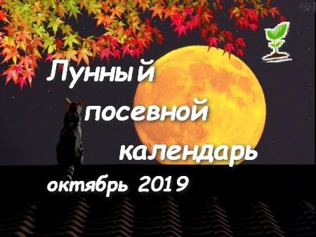 Лунный календарь садоводов и огородников на Октябрь 2019 года