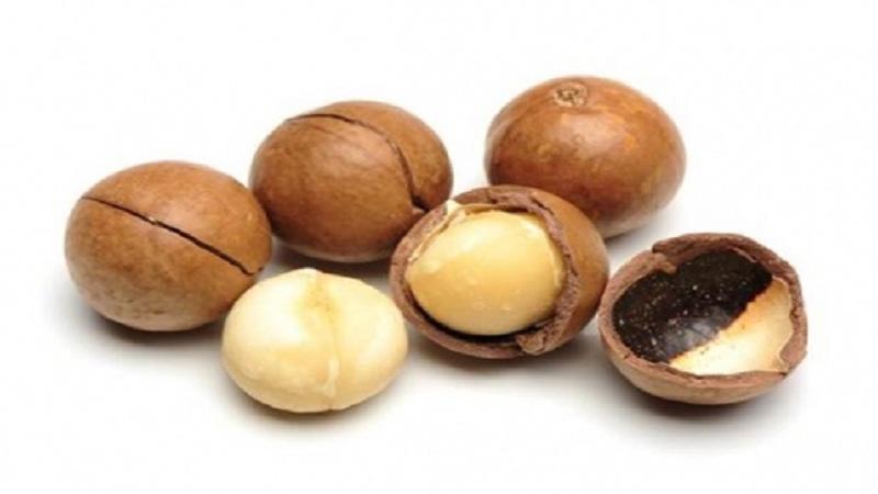 Чем полезен для организма орех макадамия