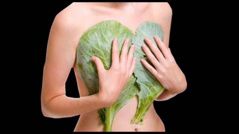 Капуста от мастопатии: лечение народными методами, отзывы